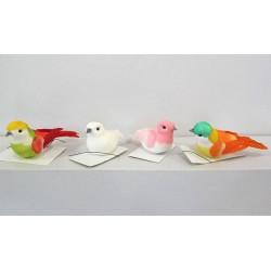 Oiseaux de couleurs n°2