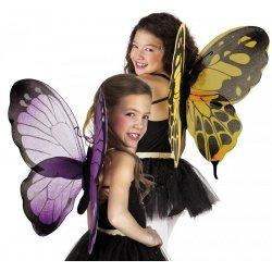 Ailes de papillons n°2