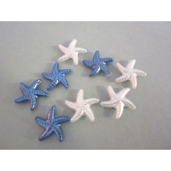 Minis Etoiles de mer