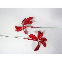 Fleurs de noël Corail ou Vert