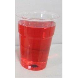 Verres en plastique de dégustation 10 cl/12 cl